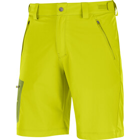 Salomon Wayfarer Shorts Men citronelle